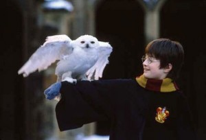 harry-potter-4-300x204