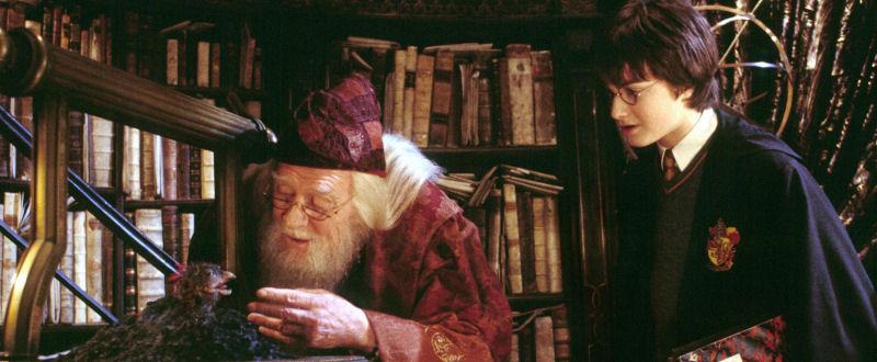 Dumbledore face à Fawkes, le Phénix