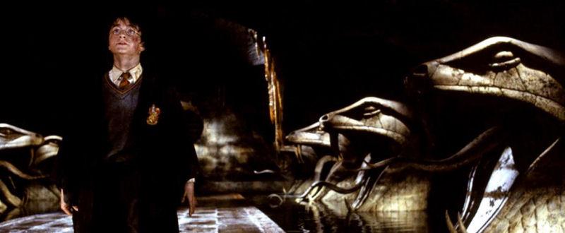 Harry dans la Chambre des Secrets