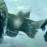 Shark Night 3D (Graeme Revell) Gang de requins