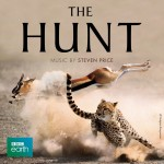 Hunt (The) (Steven Price) UnderScorama : Décembre 2015