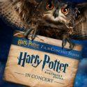 Harry Potter en ciné-concert à la salle Pleyel Le cadeau de fin d'année made in Hogwarts pour tous les fans du héros de J.K. Rowling