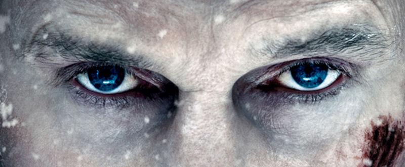The Grey (Marc Streitenfeld)