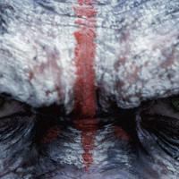 Dawn Of The Planet Of The Apes (Michael Giacchino) La légende de César, seigneur des singes