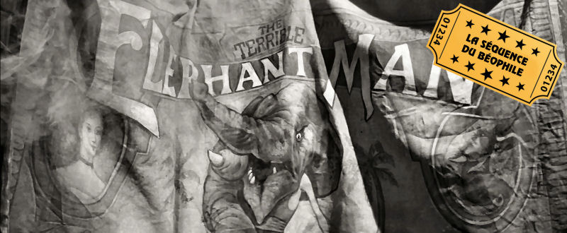 The Elephant Man (John Morris)